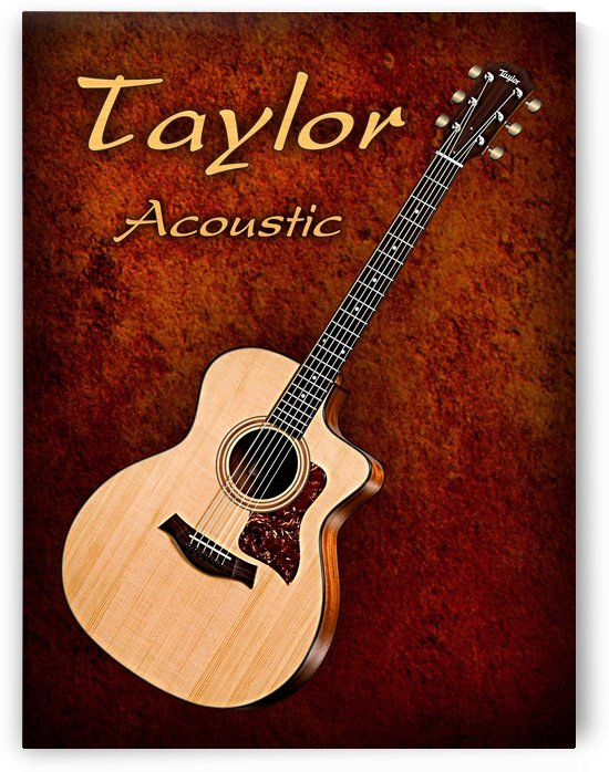 Wonderful Taylor Acoustic Guitar  by shavit mason
