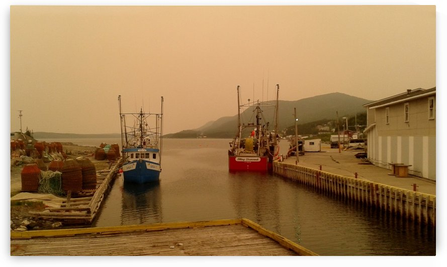 Englee Harbour under forest fire haze, Newfoundland, July 5, 2013 by Doug McQuinn