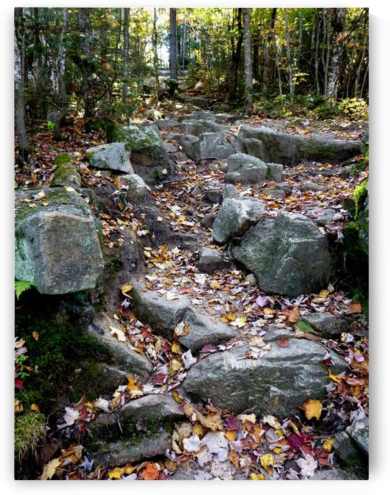 Black Cap Trail on Hurricane Mountain, NH, Oct. 2, 2013 by Doug McQuinn