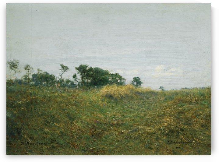 A large field by Vasily Dmitrievich Polenov