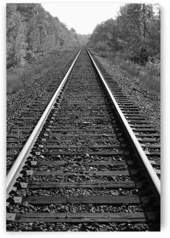 Train Tracks by PacificStock