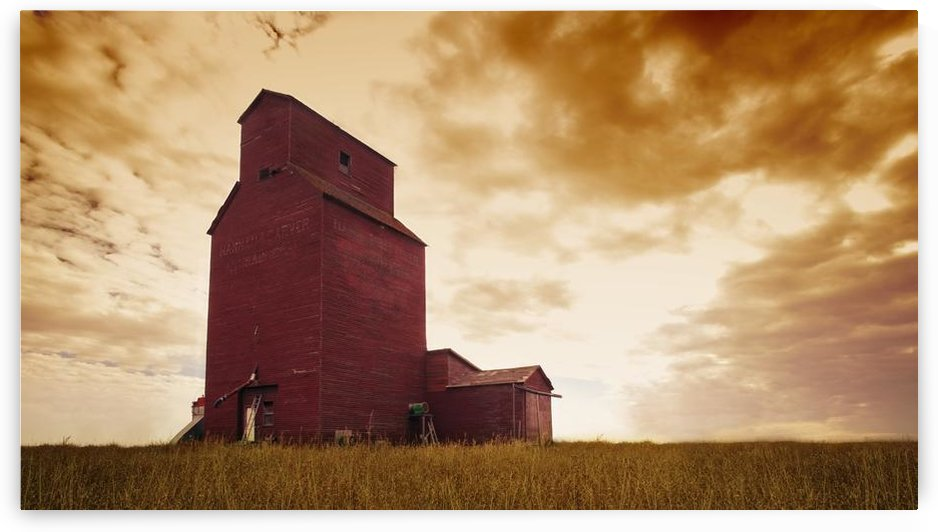 Grain Elevator by PacificStock