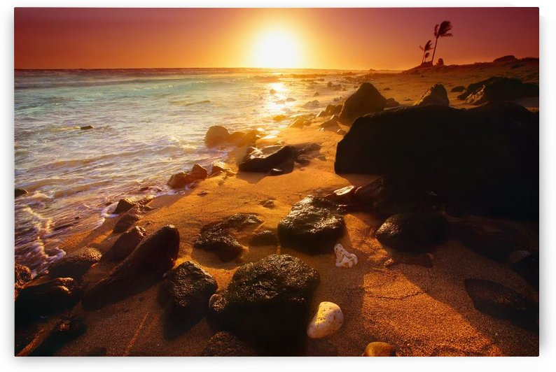 Rocky Shoreline, Hawaii, Usa by PacificStock