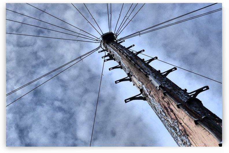 Pole by Andy Jamieson