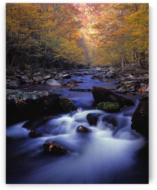 Little River Cascades And Autumn Colors, Great Smoky Mountains National Park by PacificStock