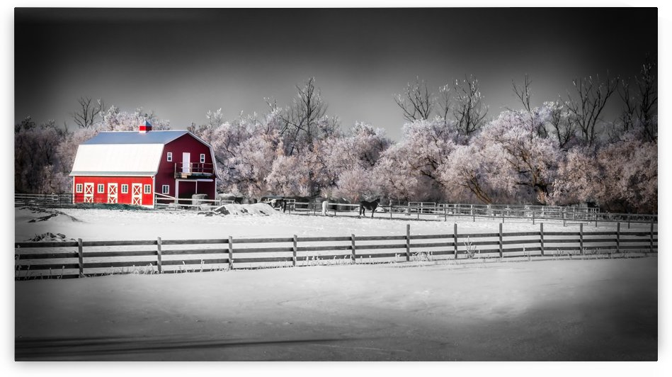 The Red Barn by Lisa Poirier