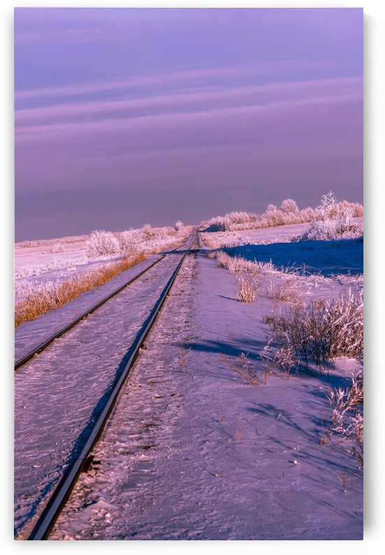 No Train in Sight by Lisa Poirier