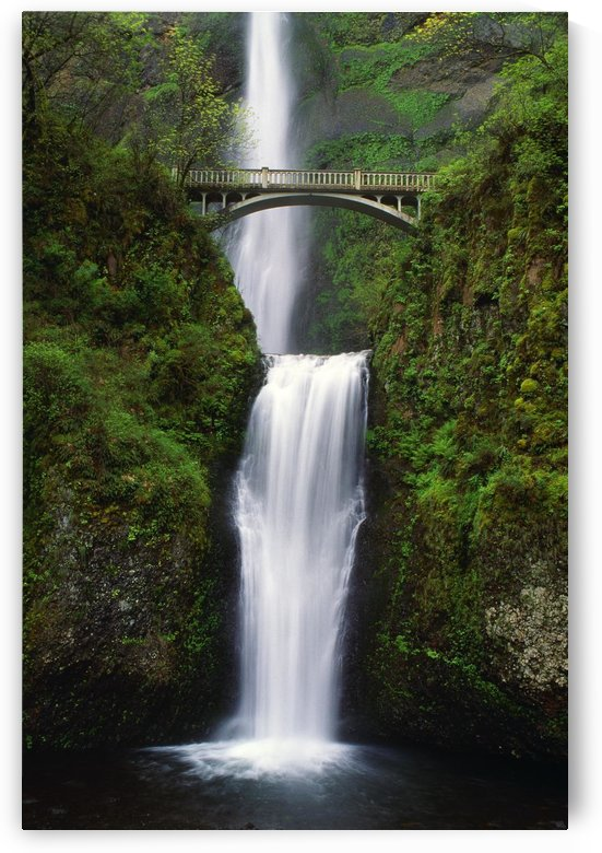Multnomah Falls, Oregon, Usa by PacificStock