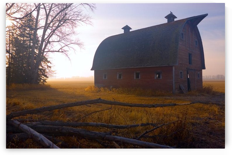 A Barn Sits In Morning Mist by PacificStock