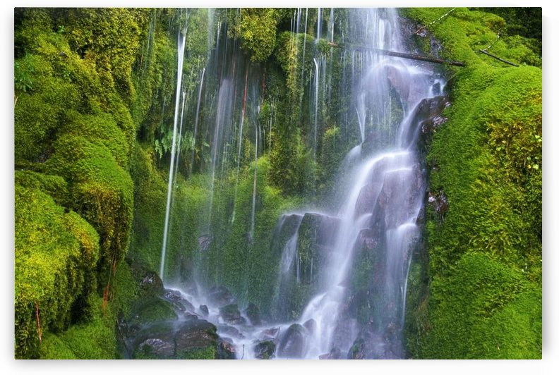 Waterfall Over Moss-Covered Rocks by PacificStock