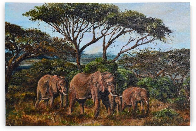 African Journey by Jenn Hollis