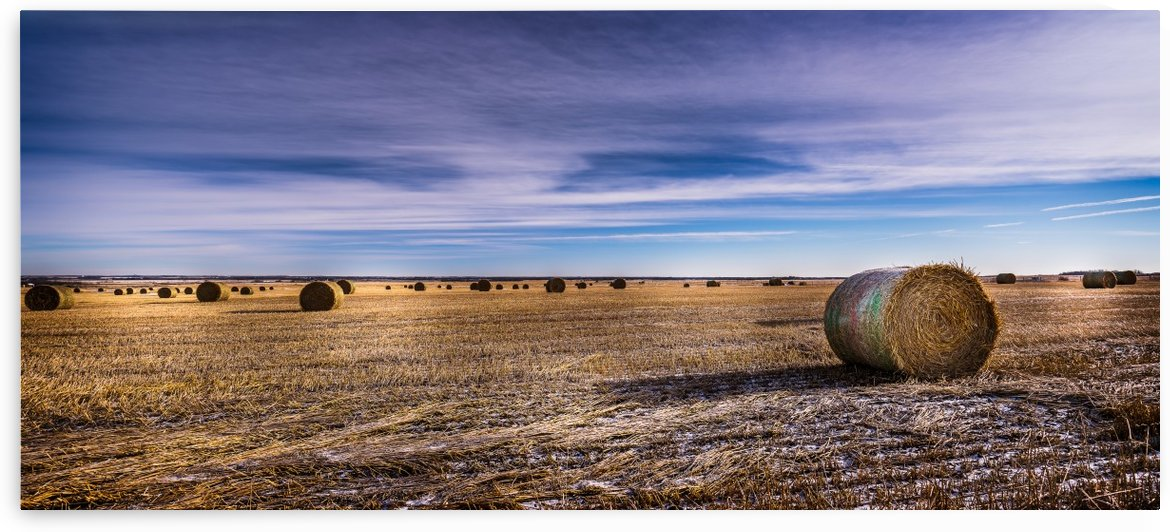 Round Bails of Hay by Lisa Poirier