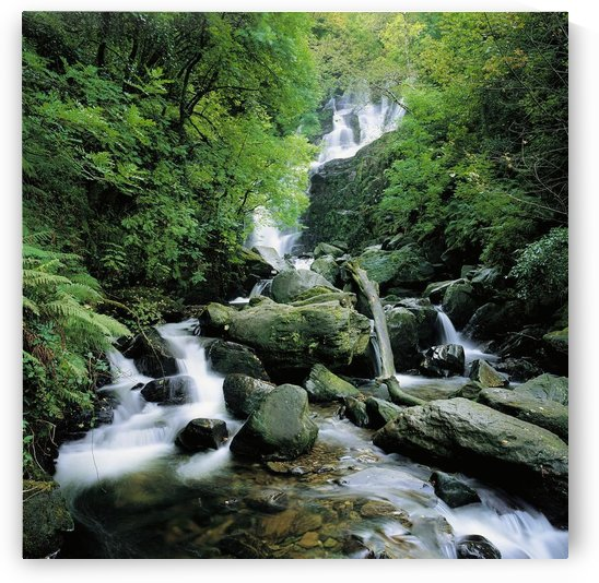 Torc Waterfall, Killarney, Co Kerry, Ireland by PacificStock