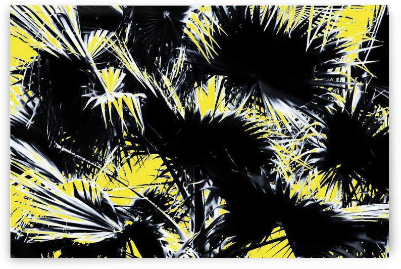 black and white palm leaves with yellow background by TimmyLA