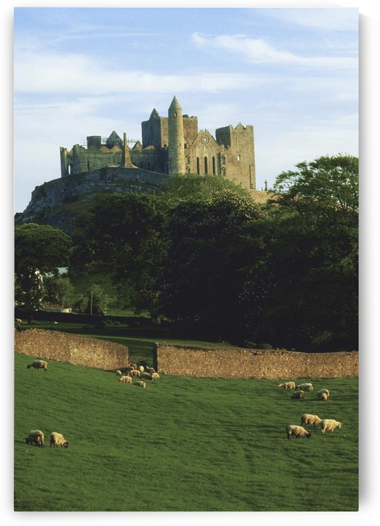 Rock Of Cashel, Co Tipperary, Ireland; Medieval Irish Castle by PacificStock