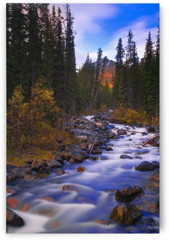 Moraine Creek, Banff National Park, Alberta, Canada by PacificStock