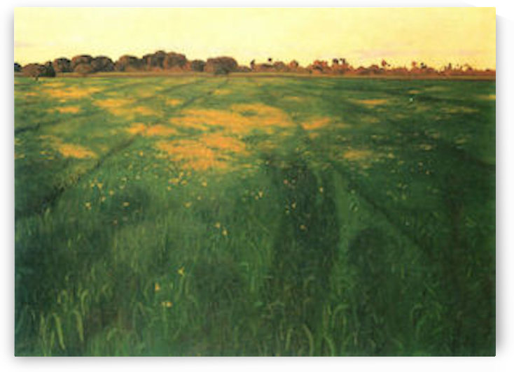 Field of green oats by Felix Vallotton by Felix Vallotton