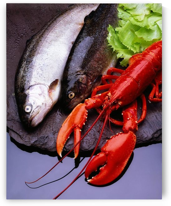 Lobster And Trout by PacificStock
