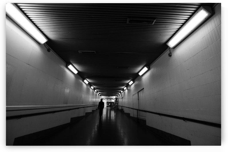 Lights by Andy Jamieson
