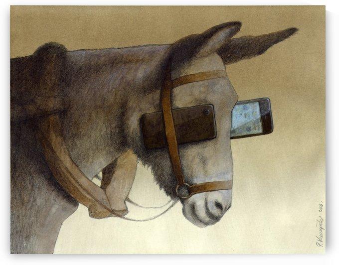 blinkers by Pawel Kuczynski