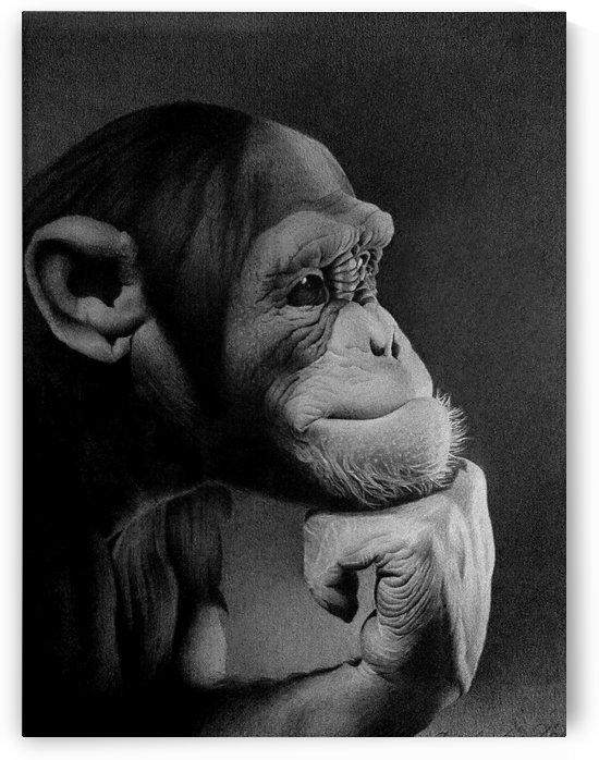 THE THINKER  by Miro Gradinscak