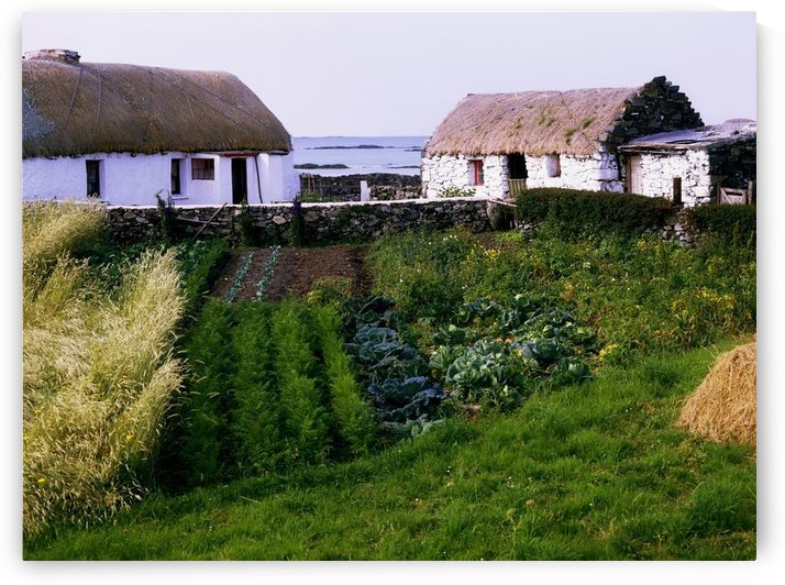 Traditional Cottages, Co Galway, Ireland by PacificStock
