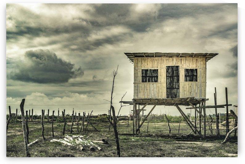 Traditional Cane House at Guayas District Ecuador by Daniel Ferreia Leites Ciccarino