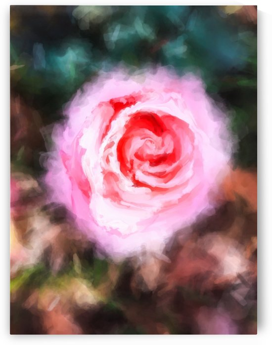 pink rose with green and brown background by TimmyLA