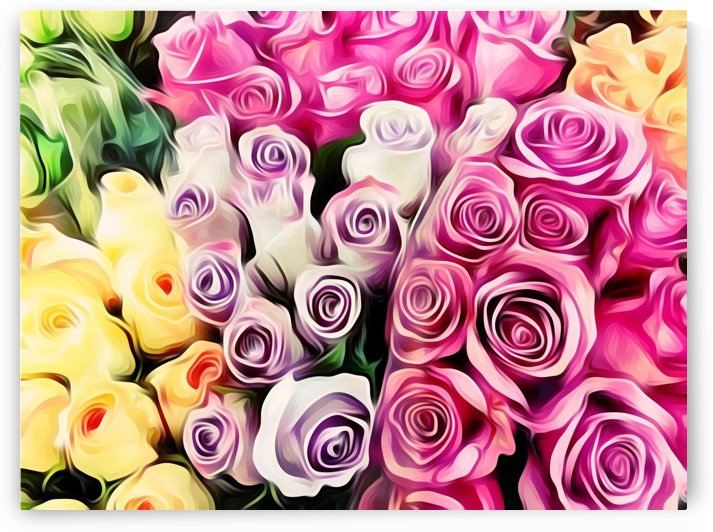 pink purple and yellow roses painting background by TimmyLA