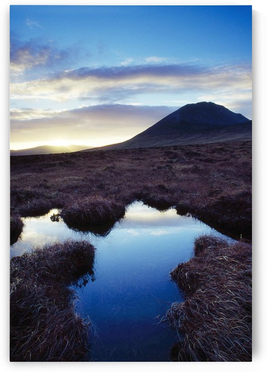 Mount Errigal, County Donegal, Ireland; Marshland Scenic by PacificStock