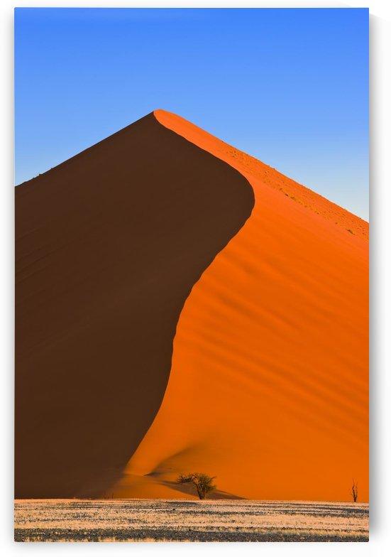 Sand Dune, Sossusvlei, Namib Desert, Namibia, Africa by PacificStock