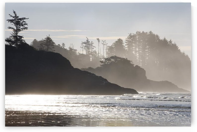 Chesterman's Beach, Tofino, Vancouver Island, British Columbia, Canada by PacificStock