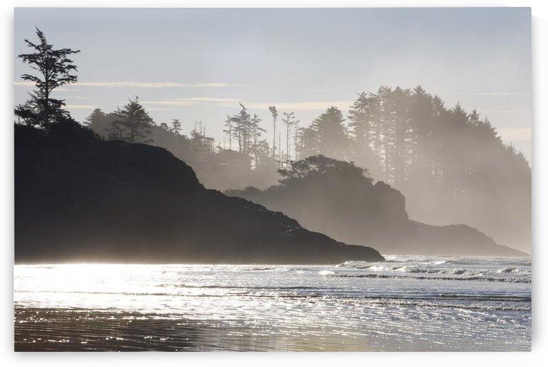 Chesterman's Beach, Tofino, Vancouver Island, British Columbia, Canada by PacificStock
