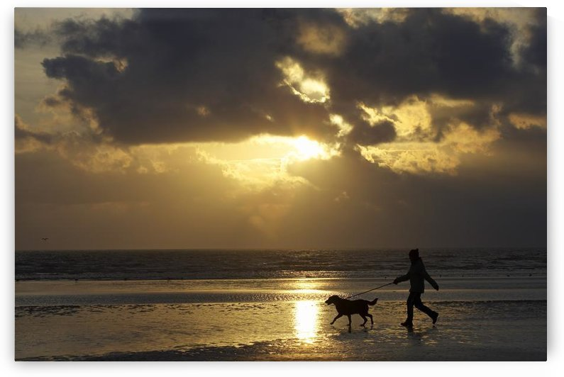 County Meath, Ireland; Girl Walking Dog On Beach by PacificStock