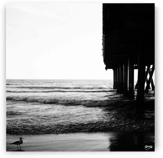 07_ SEA STRUCTURES_DOWN UNDER THE SANTA MONICA PIER VII by Ivan Attila