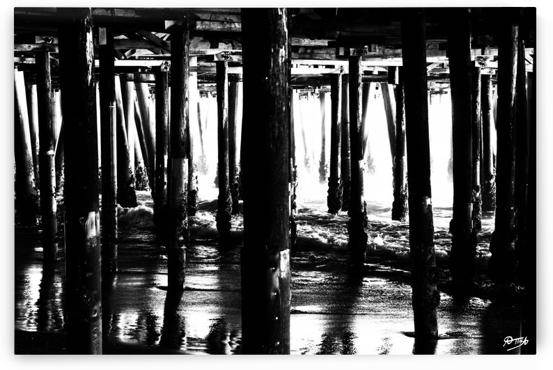 02_ SEA STRUCTURES_DOWN UNDER THE SANTA MONICA PIER II by Ivan Attila