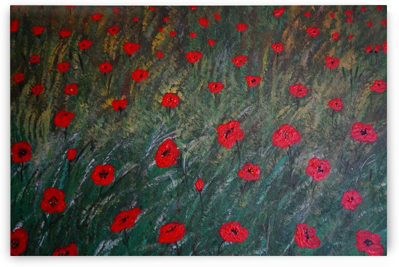 Poppy meadow by Babett-s Bildergalerie