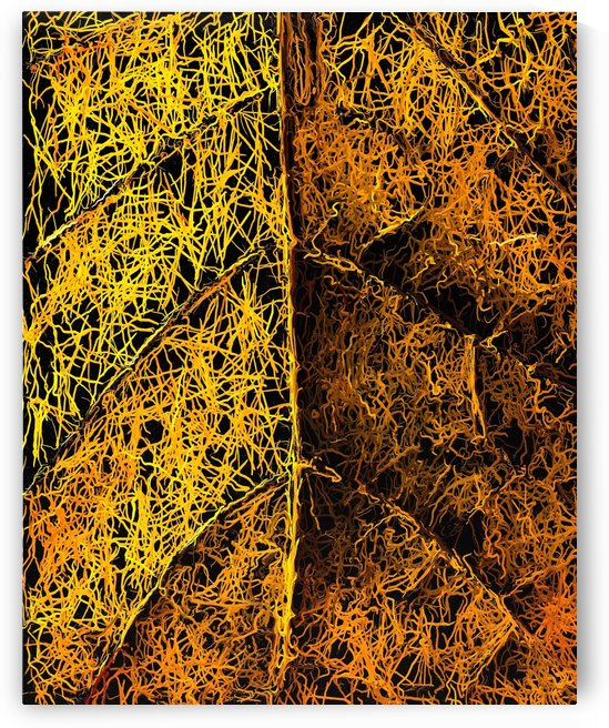 drawing and painting rotten yellow leaf texture abstract  by TimmyLA