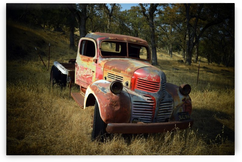 Abandoned Dodge Truck by Frank Wilson