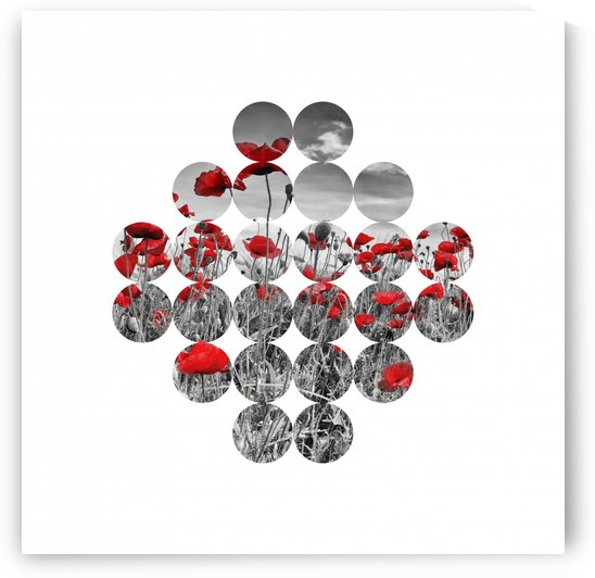 Graphic Art Poppies II by Melanie Viola