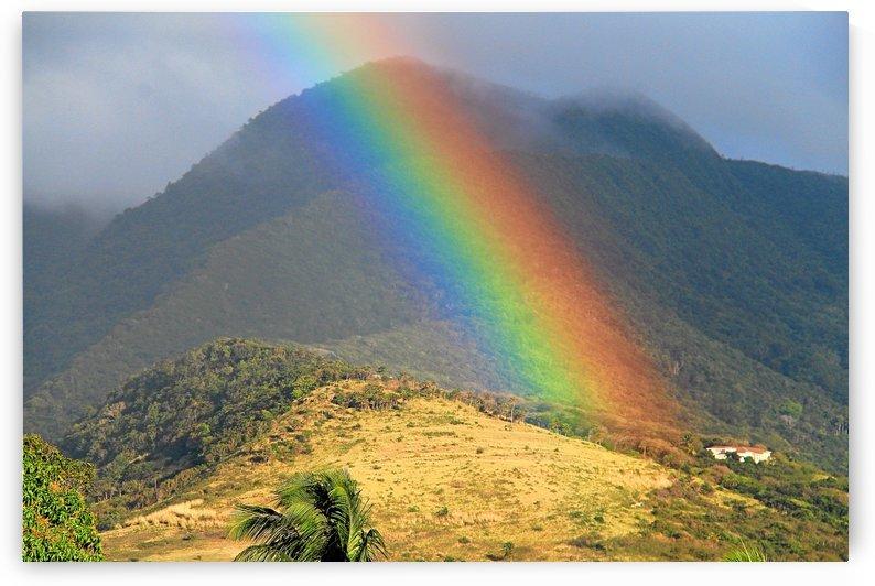 St Kitts rainbow by Keethton J France
