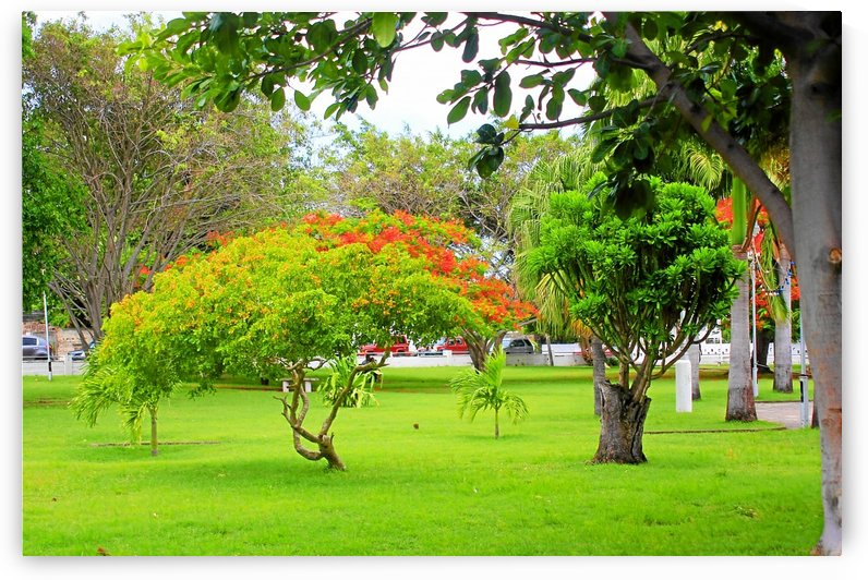 St Kitts Independence Square by Keethton J France