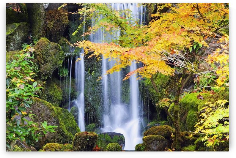Portland, Oregon, United States Of America; A Waterfall In A Japanese Garden In Autumn by PacificStock