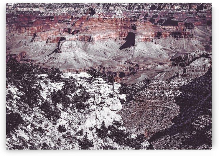 at Grand Canyon national park, USA by TimmyLA