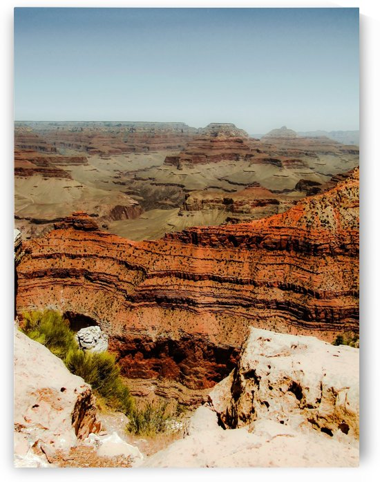 At Grand Canyon national park, USA in summer by TimmyLA