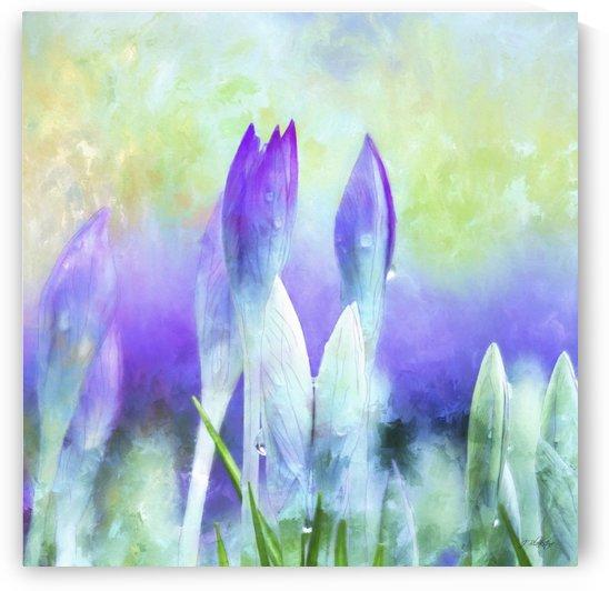 Promises Kept - Spring Art by Jordan Blackstone by Jordan Blackstone