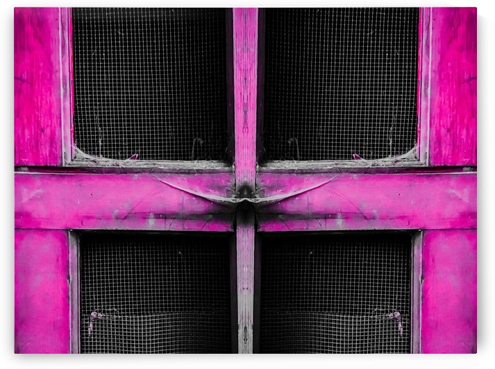 old pink wooden door abstract background by TimmyLA