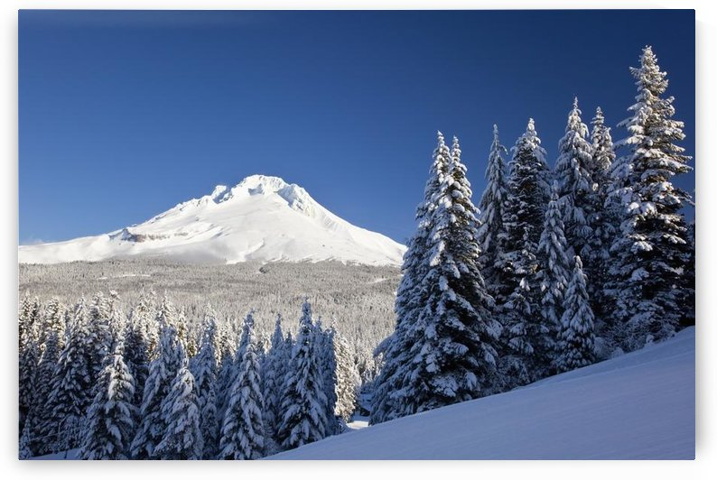 Winter Snow Over The Cascade Range; Mount Hood, Oregon, Usa by PacificStock