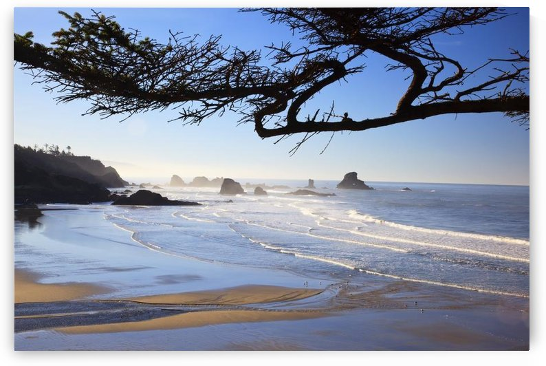 Sunrise On Indian Beach; Oregon, United States Of America by PacificStock