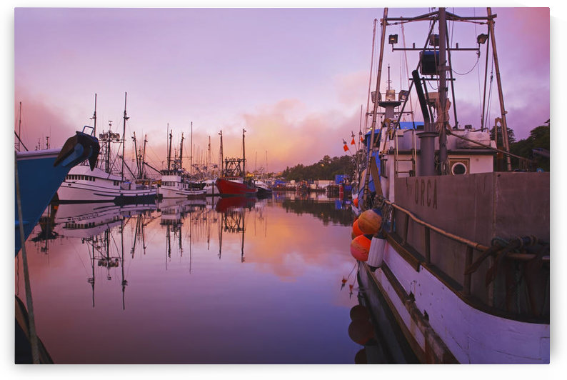 Sunrise Through The Morning Fog And Fishing Boats In Newport Harbor; Newport Oregon United States Of America by PacificStock